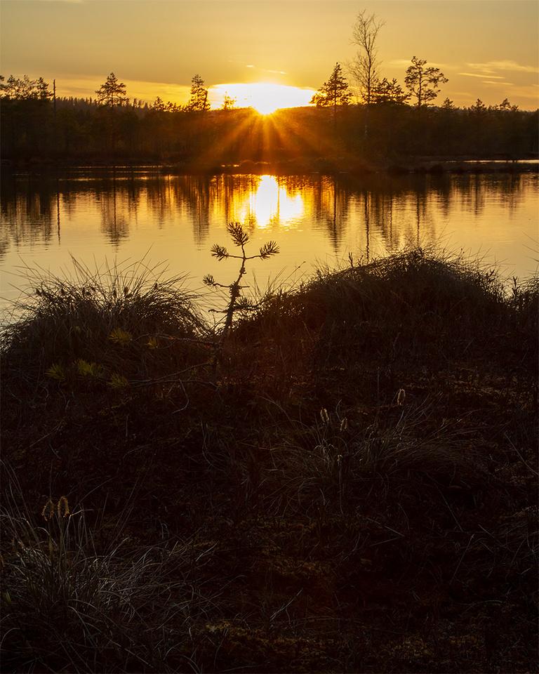 Sunset at Knuthöjdsmossen